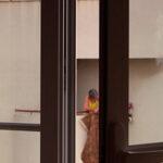 Janela (Window)